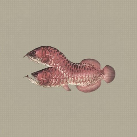 Nier Automata Wiki   Fextralife